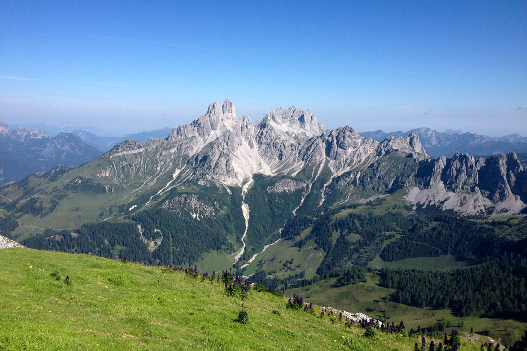 Sommerurlaub in Filzmoos - Ferienwohnung Bergblick